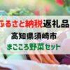 【ふるさと納税返礼品】高知県須崎市まごころ野菜セット